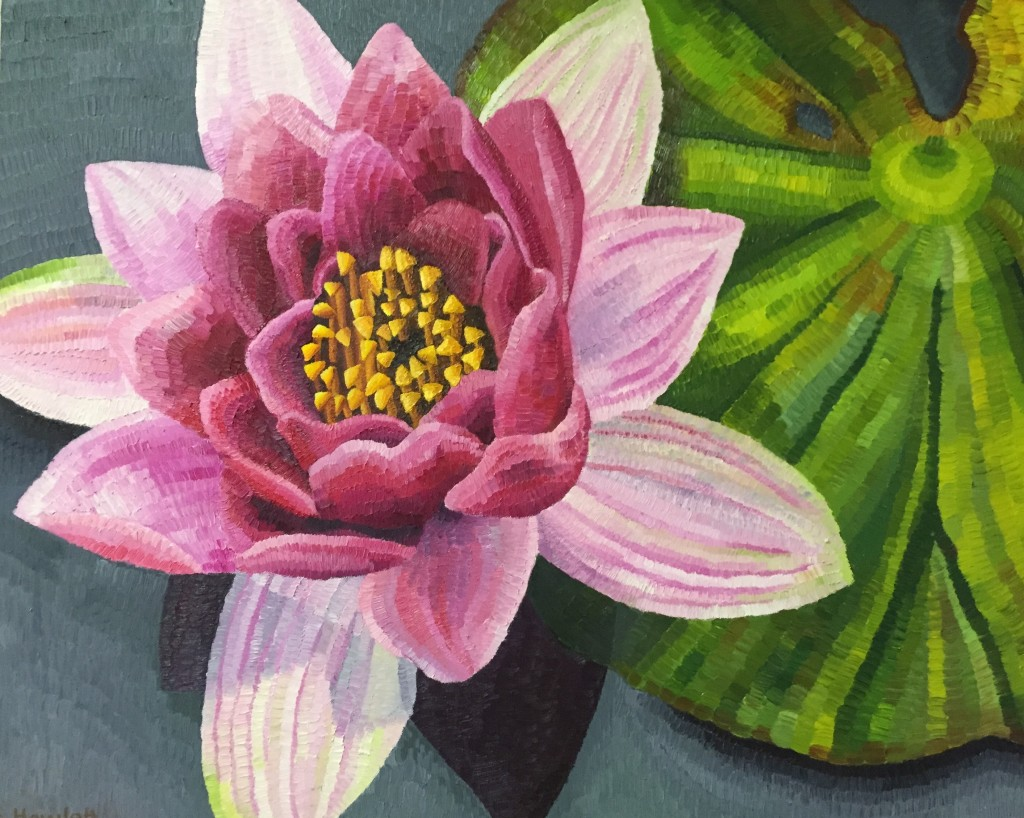 "Nymphaea in the Gardens, oil on canvas, Elisabeth Howlett, 2015. Original Painting 24 x 30"" / 60.5 x 76 cm"