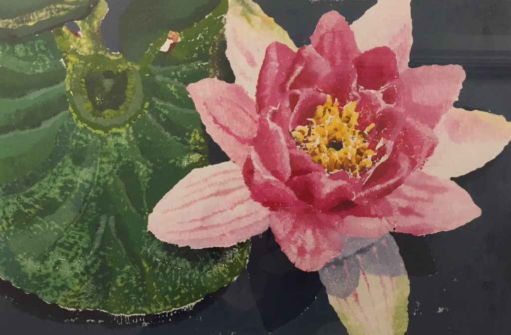 Nymphaea in the Gardens, monprint, Elisabeth Howlett, 2009